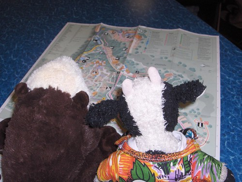 Shelly and I study the map to see where to go first