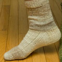 Breezeway Sock #1