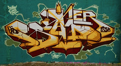 sader x scien (kingscien) Tags: graffiti hall montral fame 08 123klan scien sader