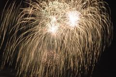 Huge Gold Willow (EpicFireworks) Tags: display fireworks bonfire pyro bang 13g epic pyrotechnics epicfireworks