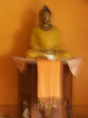 Aryaloka Buddha 2