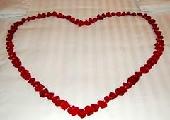 Bed made for honeymooners (_Zenji_) Tags: travel hotel singapore asia honeymoon shangrila shangrilahotel