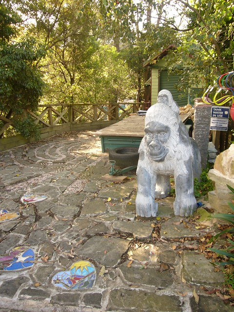 blog voyage australie sydney whv backpacker travel jungle chalet gorille