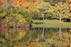 On Golden Pond ?? (michaelmatusinec) Tags: wisconsin digitalcameraclub browndeerpark canoneos40d pondarea autumn208
