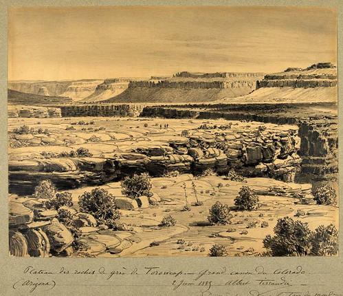 011- LLanura de rocas de Toroweap gran cañon del Colorado- Arizona