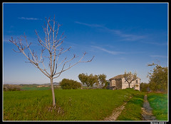 country house (Birinni) Tags: italy house tree rural canon landscape countryside country marche macerata 30d birinni