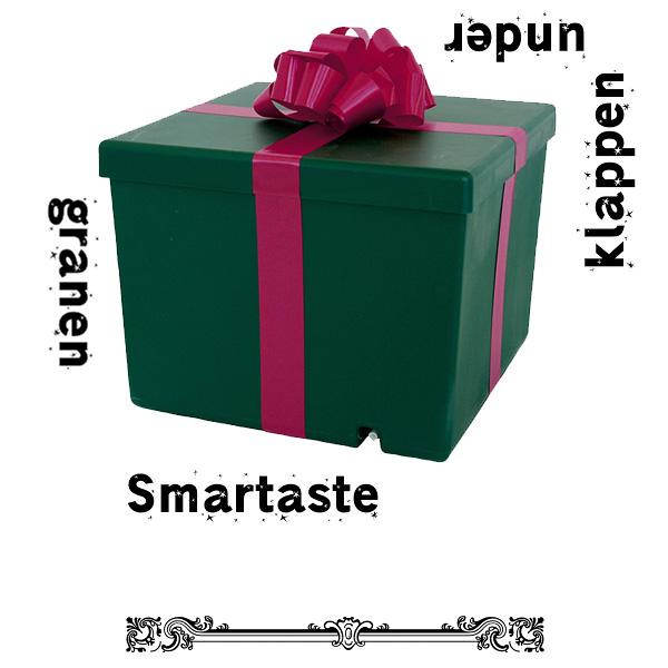 Smartaste_julklappen_under_