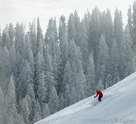Steve Romeo skis Avy Bowl