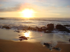 MartinsBeach_2007-225 (Martins Beach, California, United States) Photo