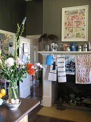 My kitchen with stainless steel painted walls, 2008 (Tara Badcock) Tags: home artwork interiors embroidery interior curtain objects skirt textile curtains textiles cushion myhome cushions artworks chezmoi teacosy australianartist tasmanianartist homewares handembroidery personalobjects objetstrouve tarabadcock embroideredtextiles treacosies framedartworks