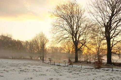 Winterse zonsopgang