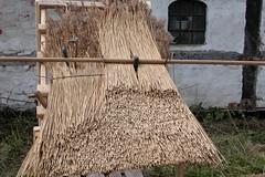 Thatched roof (Erik Christensen, Porkeri) Tags: thatchedroof strohdach strtag