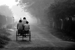 Three men in a boat (... Arjun) Tags: morning blackandwhite bw 15fav india mist 3 man male men guy topf25 monochrome silhouette ferry 1025fav 510fav iso100 three boat back nikon asia ship dof walk delhi craft vessel depthoffield 2550fav trinity frombehind cycle 50100fav third behind manual d200 rickshaw gurgaon 2008 cruiser gentleman pedal dinghy yatch liner chap f63 ncr haryana ruleofthirds 18200mmf3556g 95mm 06ev