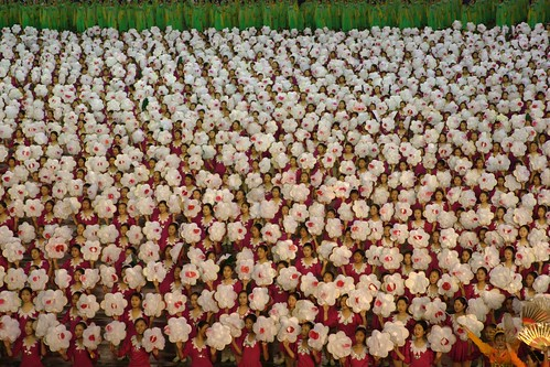 flowers (DPRK)