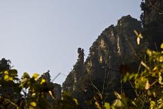 DSC_7849 (Alps Wen) Tags: landscape nikon scene nikkor hunan zhangjiajie d300 wulingyuan 2470 2470mmf28g worldnatureheritage