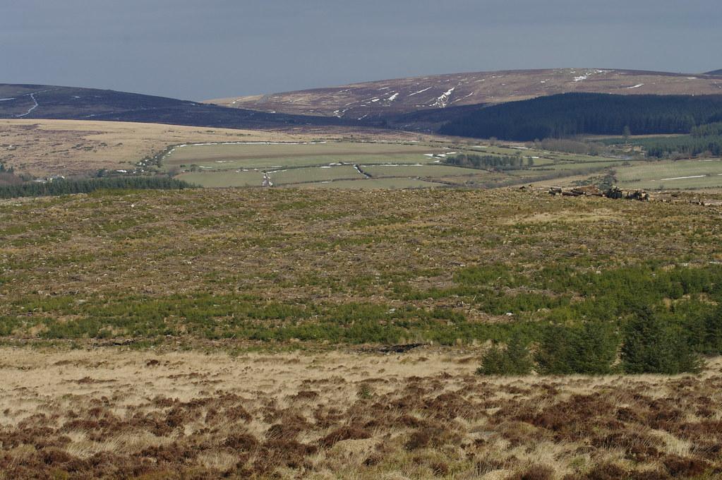 Dartmoor Looking from Belever Tor