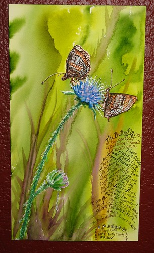 Butterflies fav Watercolor Painting of Pyrgus olieus