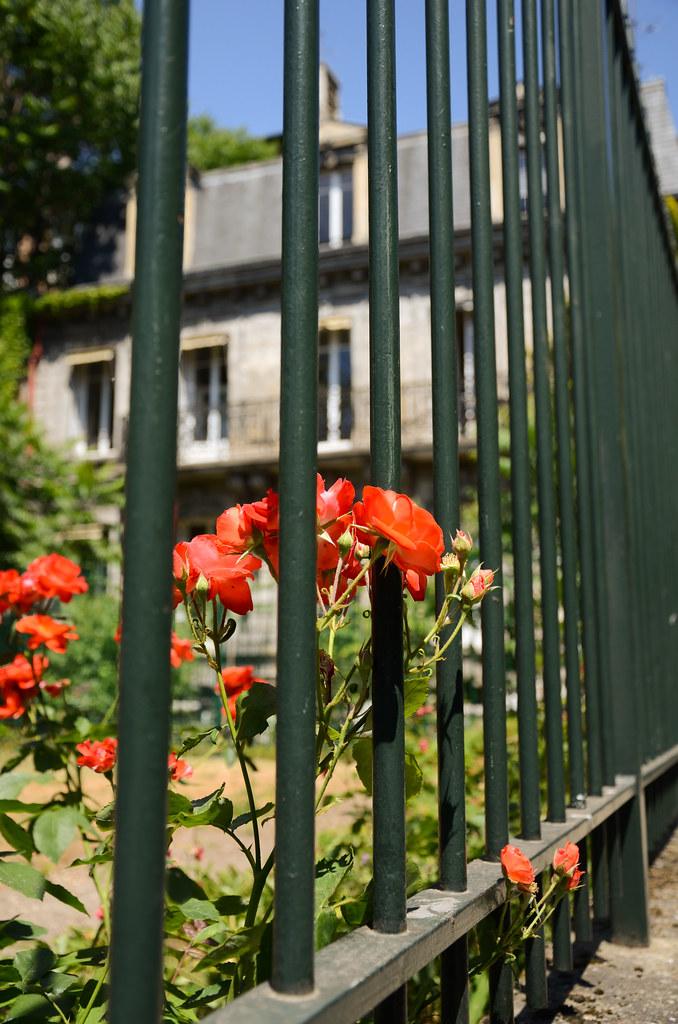 Cour d'Alsace-Lorraine