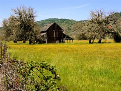 Abandoned Barn (judi berdis) Tags: nca mendocinocounty 10may2008 dayinthelifeofwillits