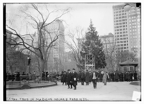 Xmas tree in Madison Sq. Park, N.Y.C. (LOC)