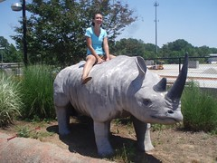 Rhino Roughrider