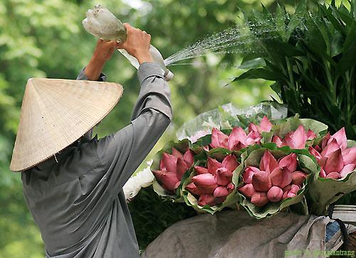 1 Thoáng Hà Nội - www.TAICHINH2A.COM