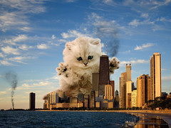 Catzilla (Sebastian Niedlich (Grabthar)) Tags: city wallpaper chicago silly cute animal monster skyline cat photoshop manipulated fun funny photoshopped humor manipulation humour godzilla stupid parody spoof manip photoshopping desaster catzilla grabthar sebastianniedlich aspect43 clevercreativecaptures