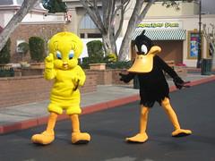 Tweety und Dufi Duck