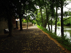 By River Severn, Worcester