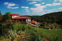 Blue Ridge Parkway - Villa Appalachia Winery (djwilliamson) Tags: blue virginia wine winery ridge parkway grapes blueridgeparkway vino cabernetfranc pinotgrigio