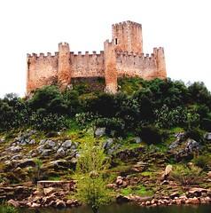 Almourol (Miguel Tavares Cardoso) Tags: portugal castelo tejo castel miguelcardoso ultimateshot theperfectphotographer ilustrarportugal montijoverdeamarelo miguelcardoso2008 migueltavarescardoso