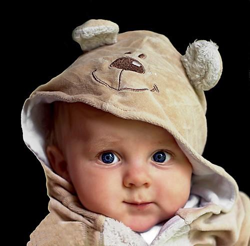 Levi the teddy bear