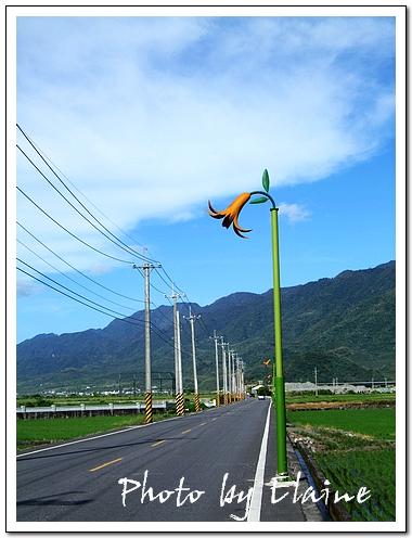 通往赤柯山的道路兩旁金針花狀的路燈