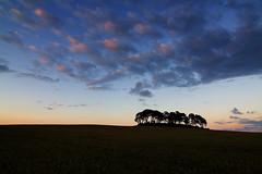 Scotland: Urqhart sunset (gato-gato-gato) Tags: sunset sun clouds landscape scotland interestingness holidays sonnenuntergang alba urlaub wolken august escocia explore 2008 sonne schottland gloaming ecosse scozia flickrexplore urqhart explored tokina1224mmf40 canoneos400d gatogatogato gatogatogatoch