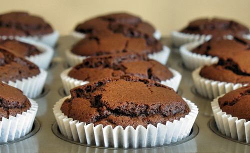 chocolate custard muffins 3484