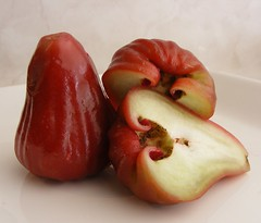 wax apple