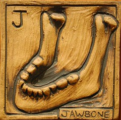 J is for Jawbone