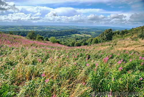 View from the Malvern Hills