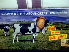 John Lydon advertises butter (hey mr glen) Tags: cow tube butter sellout advert sexpistols puns johnlydon