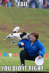 Funny Dog Pictures - Dog Bites Frisbee Womans Face