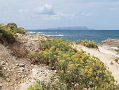 View to Da island (palestrina55) Tags: sea seascape beach water geotagged island mediterranean kreta greece crete coastline 2008 griechenland da mediterraneansea hersonissos  palestrina55 chersoninissos pfosilver   geo:lat=35338199 geo:lon=25377726