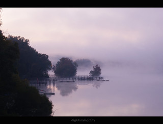 fog streams