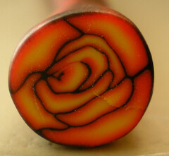 Latest cane attempt (iamcr8ve) Tags: flower cane polymerclay iamcr8ve norapero