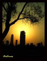 City SunSet (Aisha Altamimy) Tags: sunset sun tree kuwait buldings kuwaitcity q8 غروب الكويت الغروب كويت مباني ozq8 مدينةالكويت