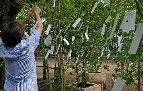 """Wish Tree for peace"" by Yoko Ono - 13"