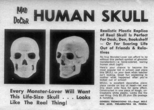 mad doctro human skull