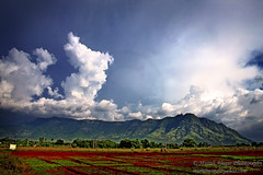 Sirumalai (Light and Life -Murali ) Tags: india mountain nature clouds scene tamilnadu dindigul sirumalai chinnalapatti