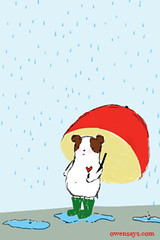 Guinea Umbrella iPhone Wallpaper