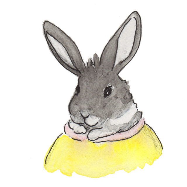 My drawing of Oreo in her Easter basket.