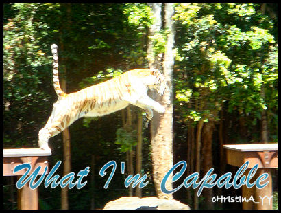 Tiger Presentation: What I'm Capable of
